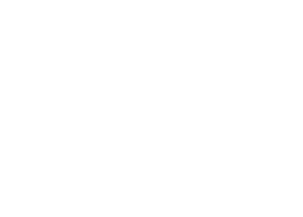 adidas-support2
